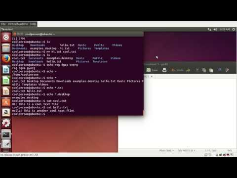 Managing Ubuntu: Using the Terminal