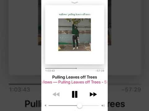 Troye Sivan on Apple Beats 1 Radio Last Week