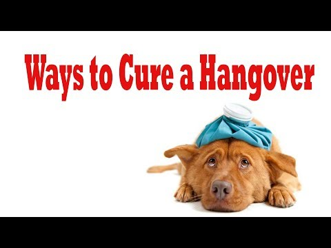 the best hangover cure : how to quickly cure a hangover || how to cure a hangover fast