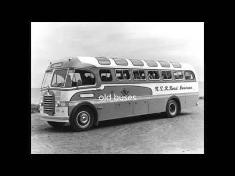 new zealand buses