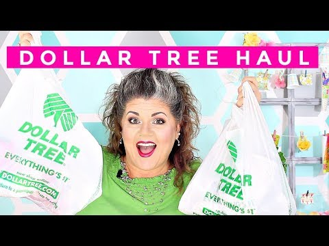 DOLLAR TREE HAUL | FINALLY A *NEW* HAUL