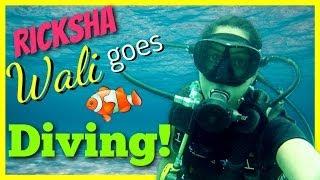 How To Dive Like A Boss  Rickshawali
