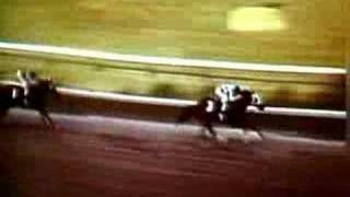 Preakness Stakes greatest moments