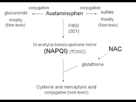 Acetaminophen Toxicity / Poisoning