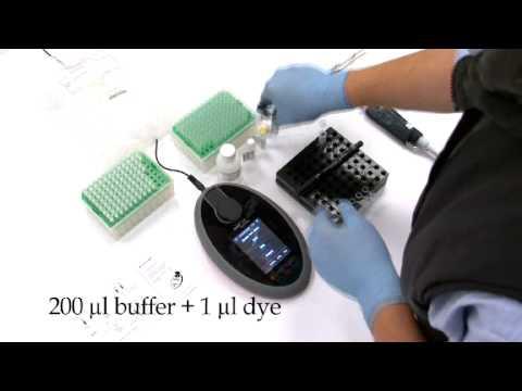 Qubit® 2.0 Fluorometer in Action