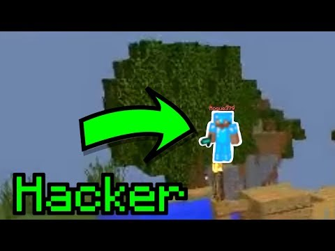 When there's a hacker in your Skywars game...