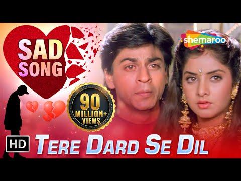 Xxx Mp4 Tere Dard Se Dil Aabad Raha HD Deewana Song Shahrukh Khan Rishi Kapoor Divya Bharti 3gp Sex