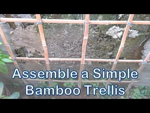 Assemble a Simple Bamboo Trellis