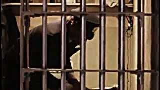 Mystery Of The Alcatraz 1962 Escape Documentary