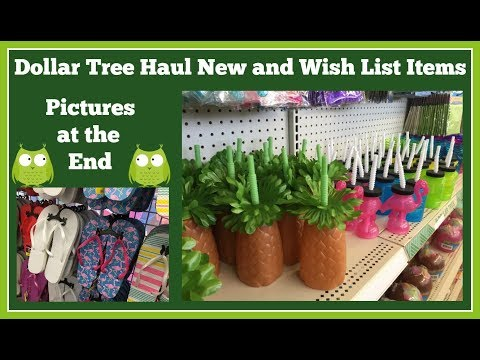 Dollar Tree Haul 🤑 New Items and Wish List Items with Pictures