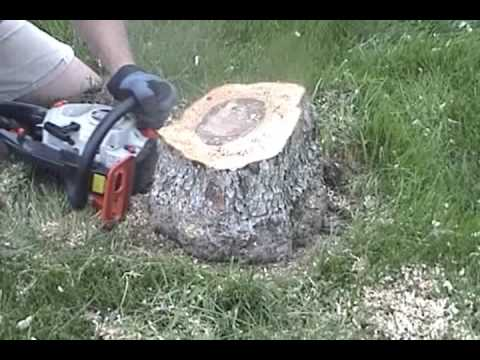 How to remove a tree stump with JTN