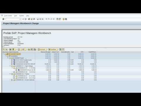 Project Cashflow | Dimensys Prefab SAP