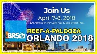 Come Meet Ryan And Randy At Reef-a-palooza Orlando 2018! | Brstv