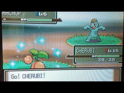 Shiny Cherubi on Platinum after c.6900 SRs!