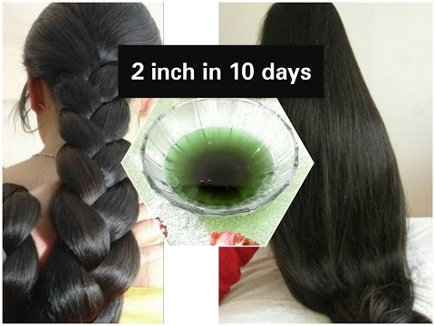 Grow thicker and longer hair in 10 days| Coconut Tulsi herbal oil | Stop hair fall | Get black hair