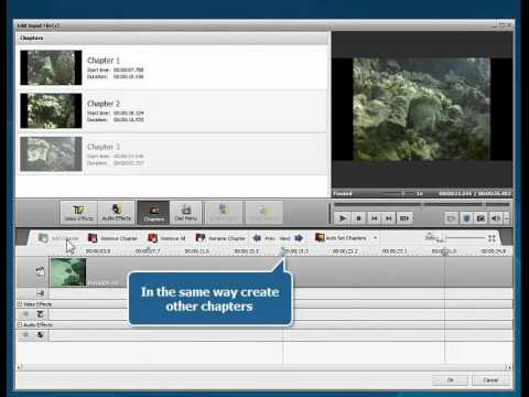 How to convert videos to Blu-ray format using AVS Video Converter?