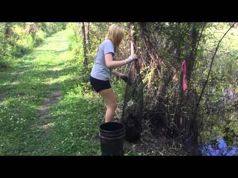 Louisiana Crawfishing
