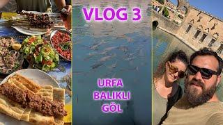 Urfa/Adıyaman Atatürk Barajı-Urfa'ya varış ve Balıklı Göl ziyaretimiz