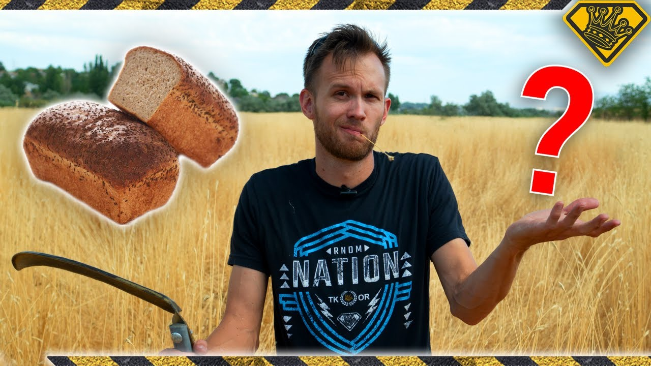 Turning Roadside WEEDS Into BREAD