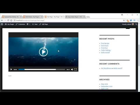 Easy Video Player Plugin for WordPress