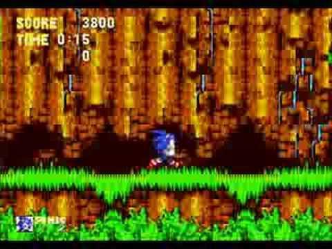 Sonic The Hypocrite