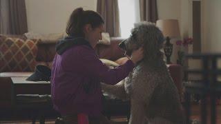 Download High Maintenance Episode 3 clip – Gatsby Meets Beth Video