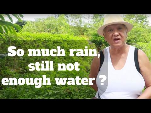 So much rain, still not enough water? | Gentle Warrior | Happy-TV