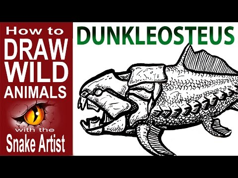 how to Draw Dunkleosteus