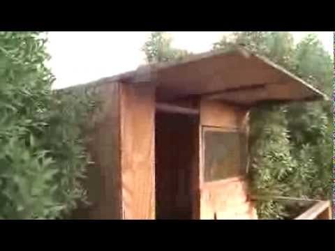 Clubhouse made from scrap wood