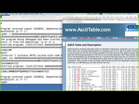 CNIT 127 Proj 3: Linux Buffer Overflow With Shellcode Demo