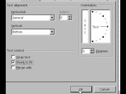 Microsoft Office Excel 2000 Shrinking text to fit