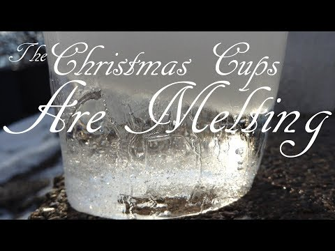 The Christmas Cups are Melting