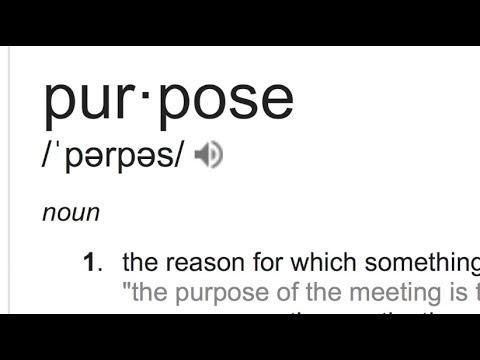 Purpose - 2017