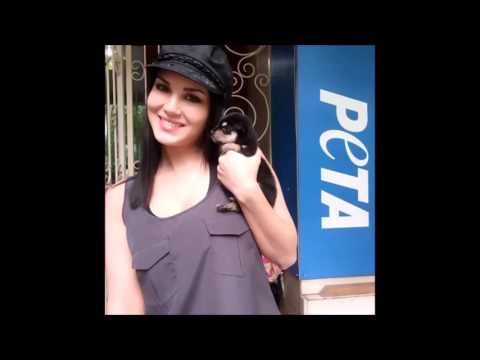 Xxx Mp4 Sunny Leone Is Getting Cozy With Her Cute Looking Pets Sunny Leone Instagram Videos 3gp Sex