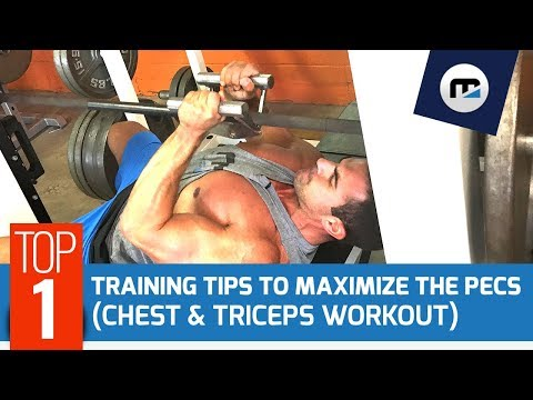 Full Chest & Triceps Workout w/ morellifit™ | IFBB or Classic Physique? 🏆