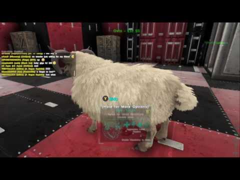 CUTTING OVIS WOOl OFF ARK: Survival Evolved (Game Preview)