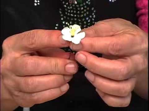 Cymbidium Orchid Corsage Cake topper Trailer
