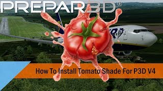 P3D v4 2/4 3] How to install TomatoShade & ReShade + Preset