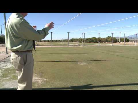 How to Grow Grass : How to Grow Putting Green Grass
