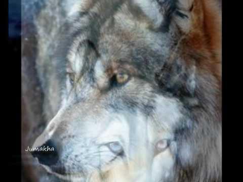 Calling The Wolf Spirits
