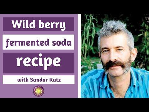 Easy Upgrades - Wild Fermentation with Sandor Katz: Wild Berry Soda