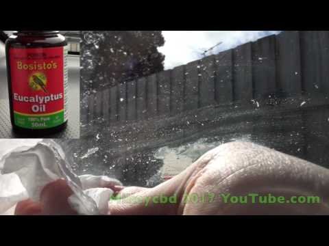 How to remove sticky tax disc from car windscreen with Bosisto's Eucalyptus Oil