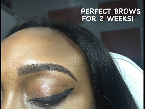 How To Get Eyebrows That Last Two Weeks!