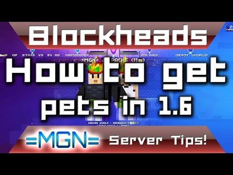 Blockheads 1.6 tips, how to get a pet in Blockheads 1.6!