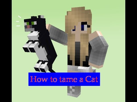 Minecraft:How to tame a cat