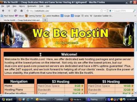 We Be HostiN (www.webehostin.com) :: Dedicated Website and Game Server Hosting Information & Guide