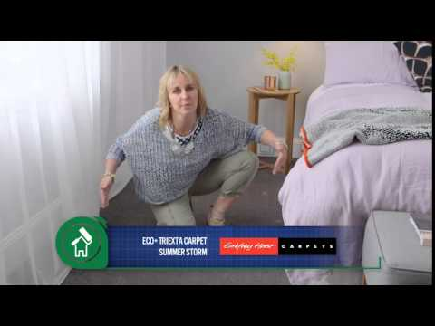 Choosing the right carpet colour - The Home Team
