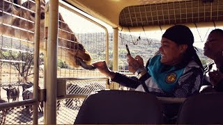 Young M.A - The Lyfe In Johannesburg, South Africa