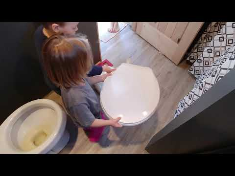 How To Replace a Toilet Seat - Install of Slow Close Toilet Seat