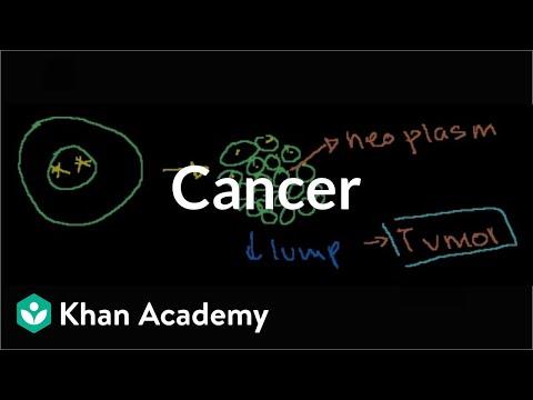 Cancer   Cells   MCAT   Khan Academy